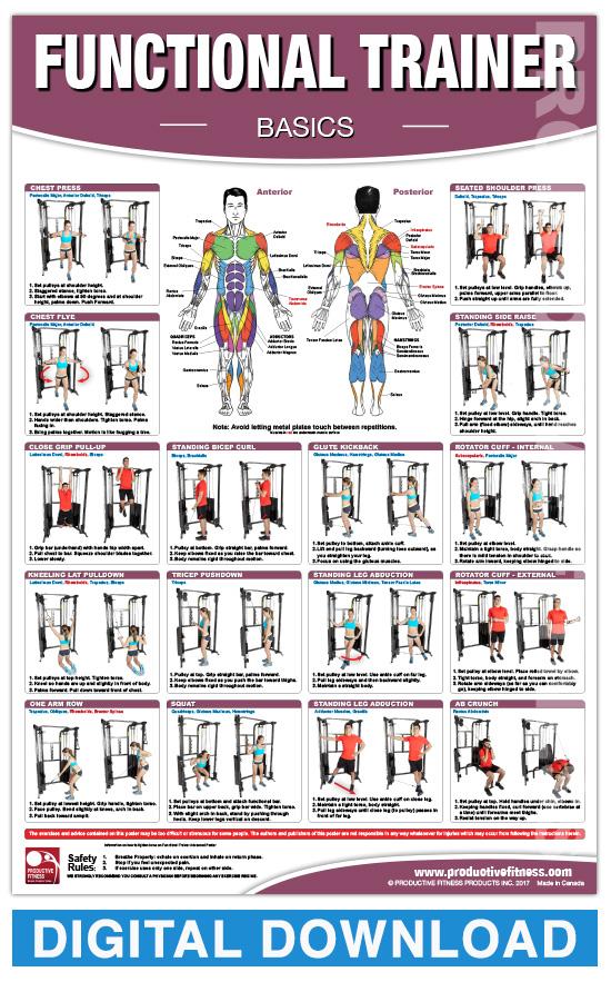 Digital Functional Trainer Basics